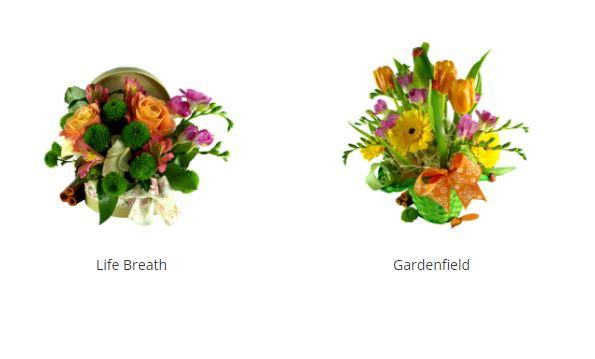 Cele mai frumoase cosuri cu flori