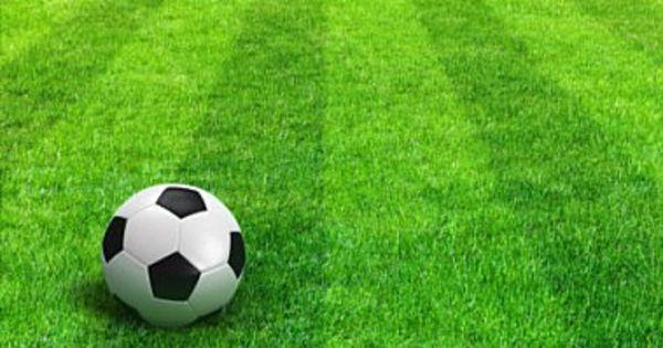 comunicat Federatia de Minifotbal Romania